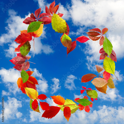beautiful leaves in the form of heart on the sky background