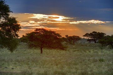 Sunset at Grootkolk, Kgalagadi Trans-frontier Park
