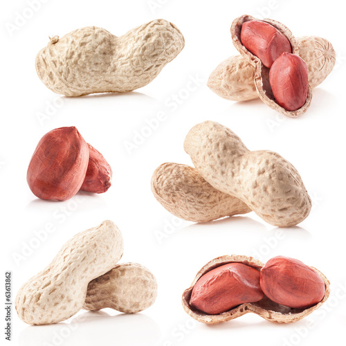 Collection of Peanuts isolated on white background