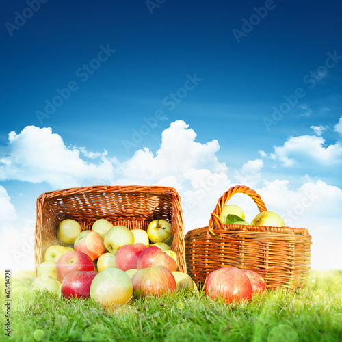 Ripe apples in a basket