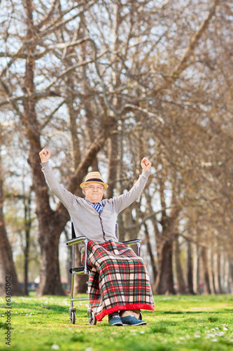 Happy senior in a wheelchair raising his hands in joy outdoors