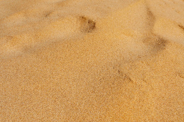 sand of a beach or a desert or a sandpit