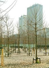 Park near Erasmus MC, Rotterdam - Netherlands