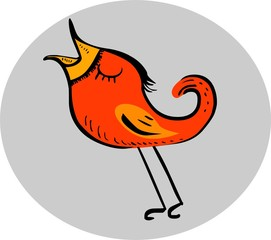 Funny singing red bird