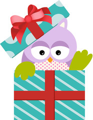 Cute Owl in Gift Box