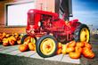 Decorative tractor and fresh pumpkins