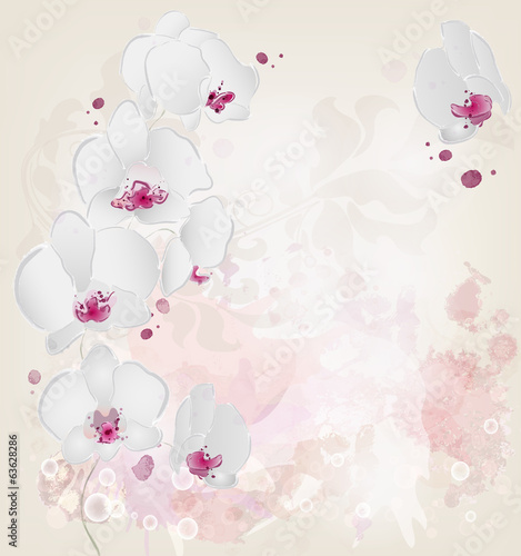 Orchid branch on a grunge watercolor background