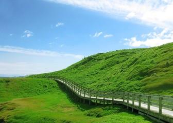 Wooden footpath to walk around green hill