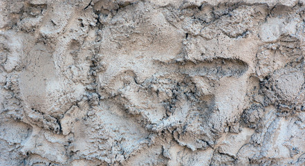 abstract background. cement.