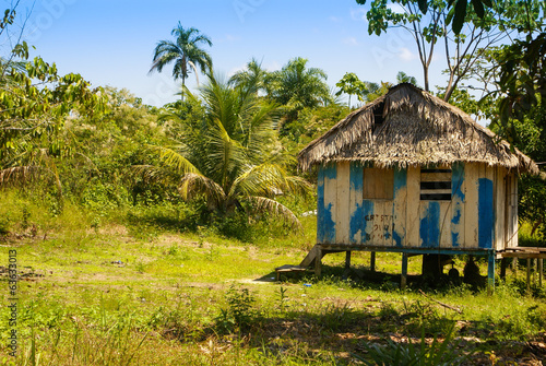 Peru, Peruvian Amazonas landscape. The photo present typical ind