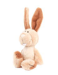 Adorable generic stuffed bunny.