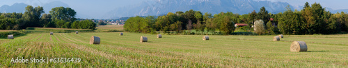 Panoramic view of hay rolls field