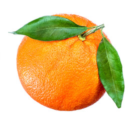 Tangerine. Mandarin fruit with leaves isolated on white