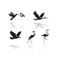 Birds. Vector format