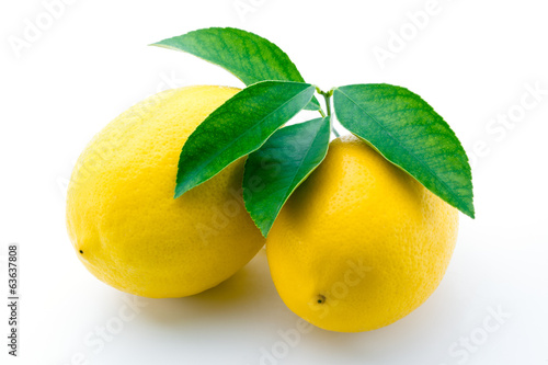 Lemons with leaves isolated
