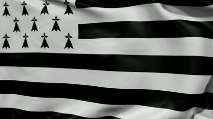 Flag of Brittany - 4K UHD