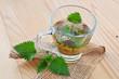 Stinging nettle tea (Urtica dioica)