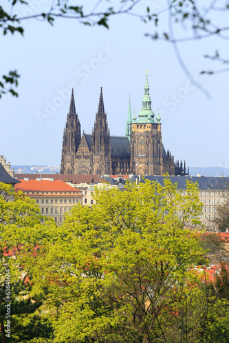 Spring Prague gothic Castle with the flowering Trees