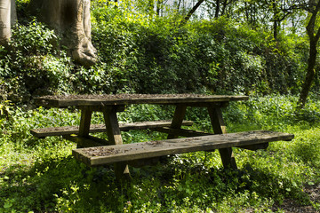 wooden bench and wooden table