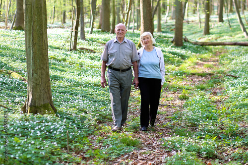 Happy senior couple walking in beautiful summer forest