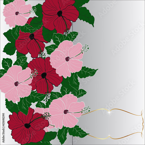 Vector invitation greeting card with hibiscus