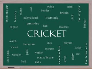 Cricket Word Cloud Concept on a Blackboard