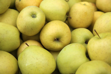 Golden Delicious Äpfel