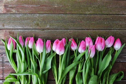 canvas print picture pink tulips