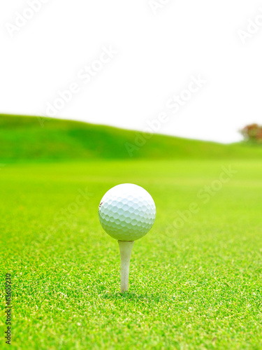 Macro golf ball with tee on grass