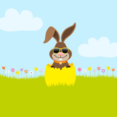 Bunny Sunglasses Yellow Eggshell Meadow