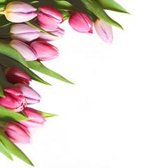 Umrandung aus Tulpen