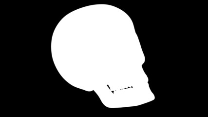 Skull. Looping. Alpha channel included.