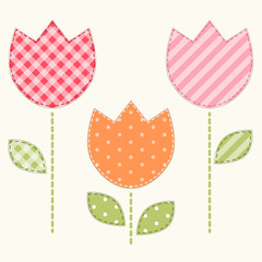 Cute tulips 2