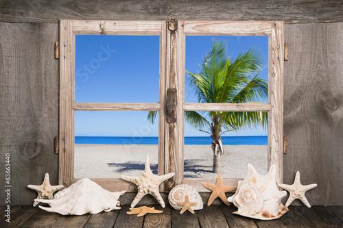 Das Haus am Meer mit Palmen und blauem Himmel