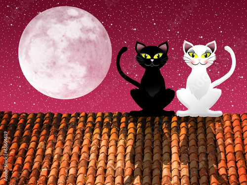 Cats on roof