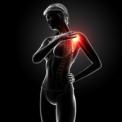 3d Anatomy of female shoulder pain in black