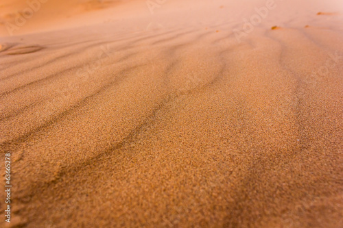 Texture of the Sahara