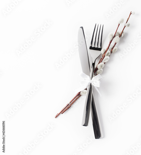 Spring silverware on white background and willow 2