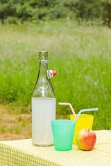 Fresh homemade lemonade on a picnic table