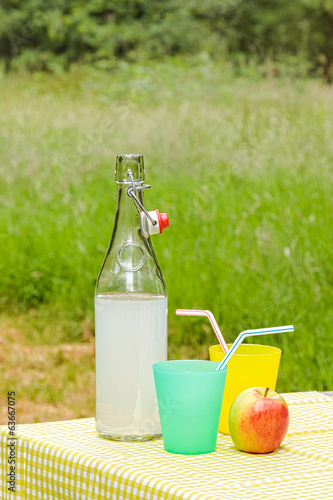 Fresh homemade lemonade on a picnic table