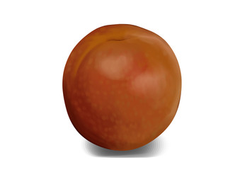 Simple, realistic brown, purple pluot illustration, front view.
