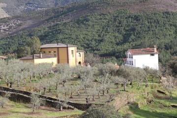 Albergue y casa unifamiliar, Sauceda, Hurdes, España