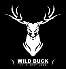 Bold White Buck