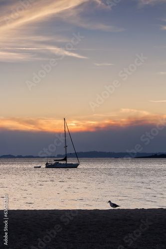 Boat and gull at dusk