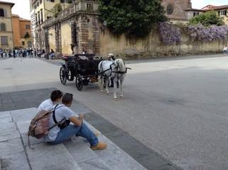 Pferd und Kutsche mit Touristen