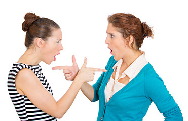 Yelling, blaming each other mad women