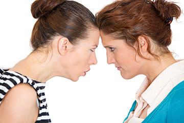 Yelling, screaming, arguing business women