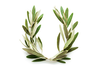 Olive tree wreath