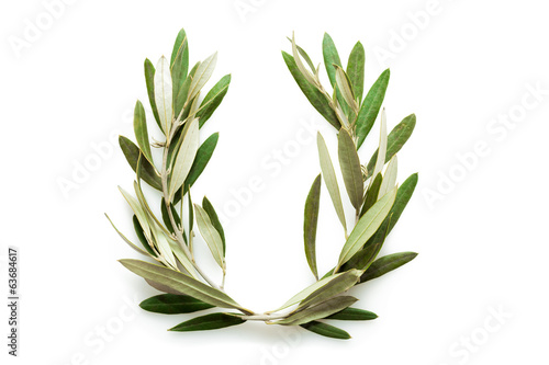 Tuinposter Olijfboom Olive tree wreath