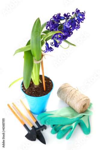 Composition with garden equipment and flowers in metal bucket